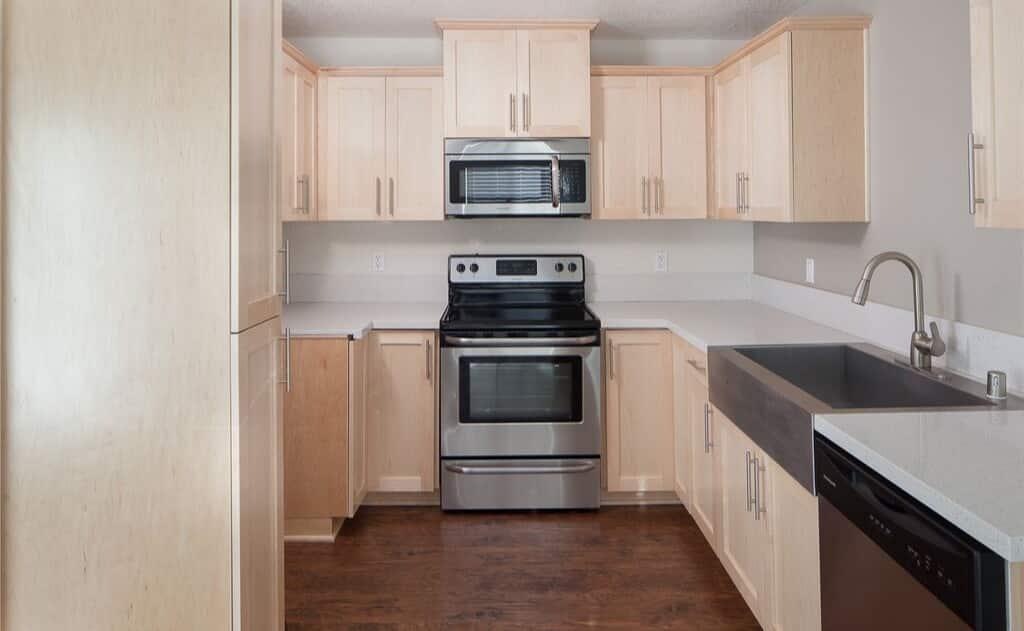 Stainless Steel Appliances & quartz counters